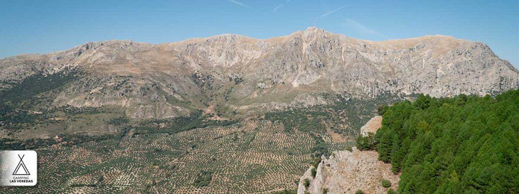 Vistas a uno de los miradores y a la Sierra de la Pandera.